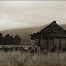 Shed in the Paddock by BK Photography