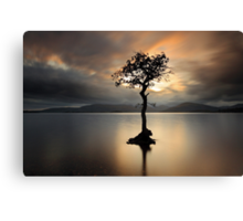 Lone tree on Loch Lomond Canvas Print