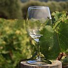 Wine glass on a log by Susan Leonard