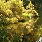 Along the Lake - Calendar Image    ^ by ctheworld