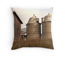 Two Old Silos Talking About the Barn Throw Pillow