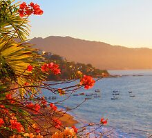 Late afternoon at the beach, Puerto Vallarta, Mexico - Una Tarde en la Playa by PtoVallartaMex
