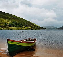 Lough Nafooey Boat by Michelle McMahon