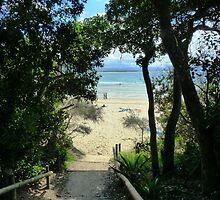 Byron Bay ,Steps to Clarkes Beach by Virginia McGowan