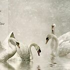 Feathered friends by cards4U