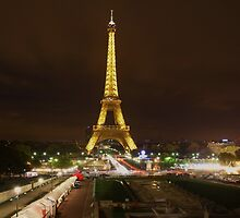 The Eiffel Tower lights up. by wayne51