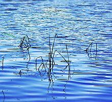 """Crystal Blue Lake"" by Anthony Cherubino"