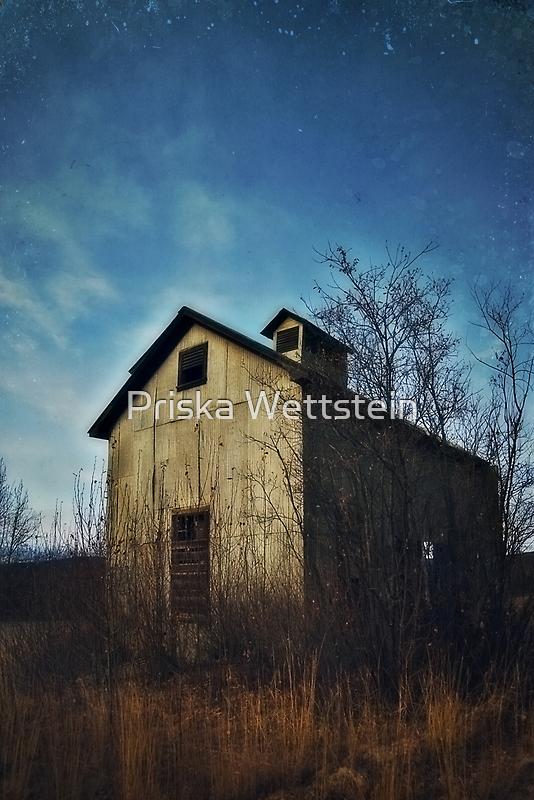 remains of earlier days by Priska Wettstein