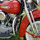 Shiny Red Classic by Laurie Perry