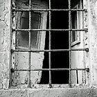 Window in Time by James2001