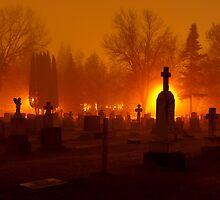 Walking Amongst The Dead by Sandra Parlow