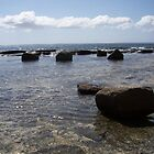 Floating Rocks No.1 Huskisson NSW by Donna Huntriss