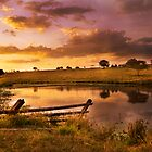 Queensland Country Sunset by Kate Wall