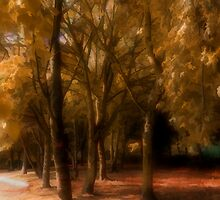 Autumn Colour by Harry Purves