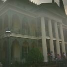 Disneyland Haunted Mansion by nuwisha