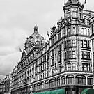 Harrods by Mark  Swindells
