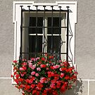 Wrought Iron & Flowers. by Lee d'Entremont