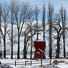 Red Barn by teresalynwillis