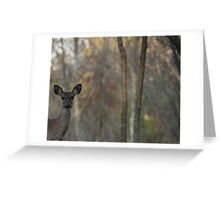 Deer is Proud of his Forest Greeting Card