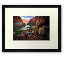 Marble Canyon Cactus Framed Print