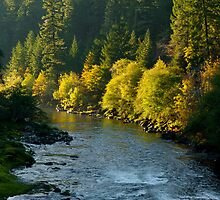Autumn; the N. Umpqua by Lee LaFontaine