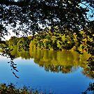 Shenandoah River by Eileen Brymer