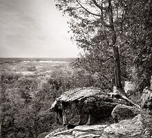 Rattlesnake Point  by Steve Silverman