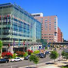 The Children's Hospital of Philadelphia by Schuyler L
