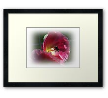 Bee And The Holly Hock Framed Print