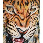 Mark Getty Fine Art - Leopard by markgetty