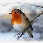 Winter Robin by RitaLazaro