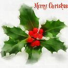 Christmas Holly by RitaLazaro