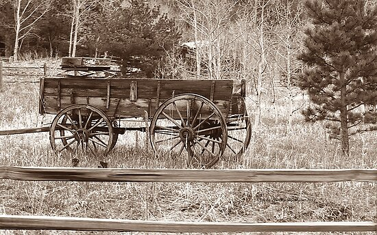 This Is How We Used To Roll by Shilohlin Pfeiffer