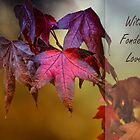 Autumn days by cards4U
