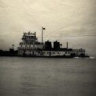 Mississippi River Ferry by DionNelson