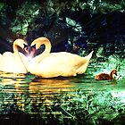 Swan Heart Abstract by Theodore Black