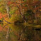Autumn Reflections by Jean-Pierre Ducondi
