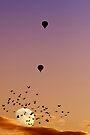 Albuquerque International Balloon Fiesta, 2011.2 by Alex Preiss