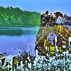 Hartwell Lake Revisted by Thomas Eggert