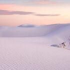 White Sands NM by Cecil Whitt