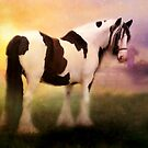 Gypsy Vanner by Angelgold Art