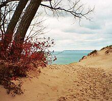 Sleeping Bear Dunes by artwhiz47
