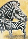 Grant&#x27;s Zebra by BarbBarcikKeith