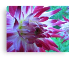 Two-tone Canvas Print