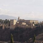 Alhambra , Grenada, Spain by shaun965
