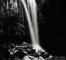 Dreamy Curtis Falls by Kym Howard