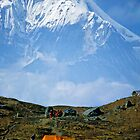 Campsite near Dhaulagiri, Nepal by Kevin McGennan