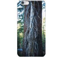 Tree within a tree. iPhone Case/Skin