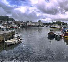 Honfleur  Harbour (4) by Larry Lingard-Davis