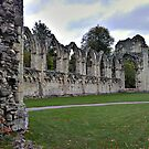 Ruins of St. Mary's Abbey, York-1 by PhotogeniquE IPA
